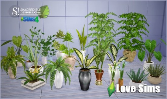 Растения Plants от Simcredible Designs