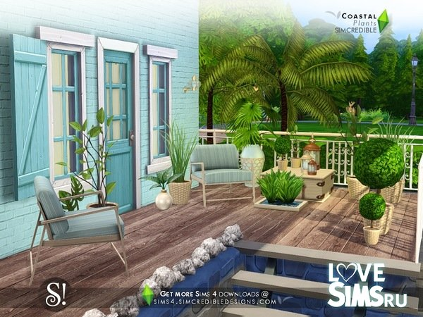 Растения Coastal Plants от SIMcredible