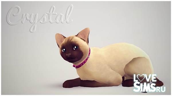 Кошка Crystal от Booboo