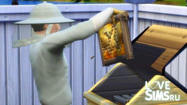 Навык пчеловодство в Симс 4