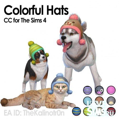 Шапки для кошек и собак
