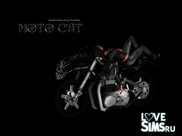 Одежда Moto cat от Shushilda