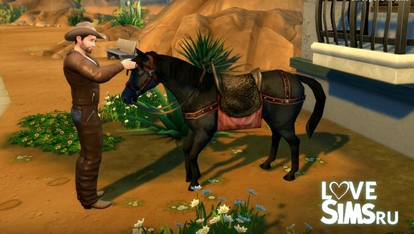 Функциональная лошадь